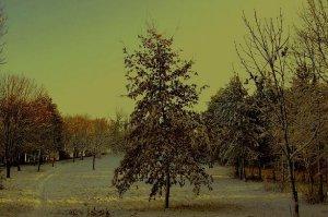 Téli táj 7.