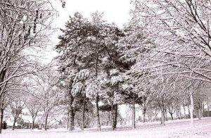 téli táj 1.