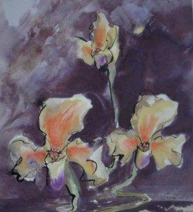 Orhideák   40 x 40 - aqvarell