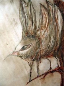 szürreális madárka