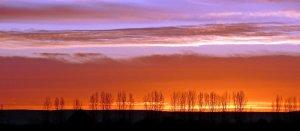 hajnal szinei