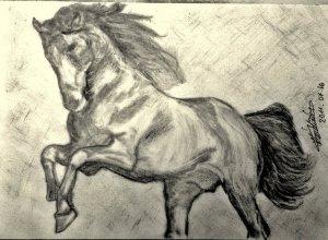 Hiába akarom,lovat nehéz rajzolni!