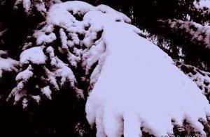 Téli táj 6.