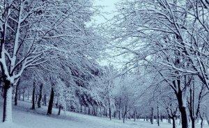 Téli táj 5.