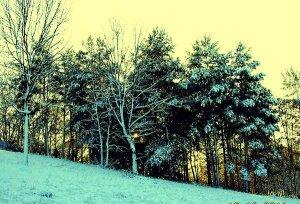 Téli táj 11.