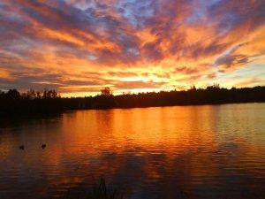 Naplemente ( 2012.11.03. Csónakázó tó - Szombathely )