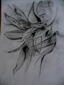 Mazsoka kedvenc virága
