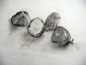 szárított gránátalma héjak