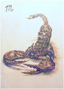 Csillagjegyek - Skorpió II.