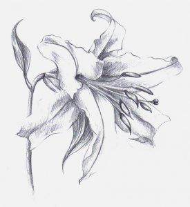 Liliom 2.